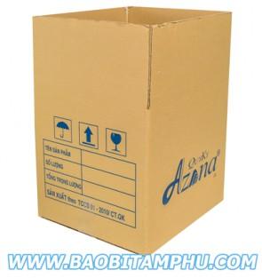 Thùng carton 3 lớp ns1